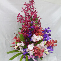 Arrangement with Orchids